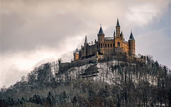 Wallpaper Germany, Castle Hohenzollern, trees, snow, winter