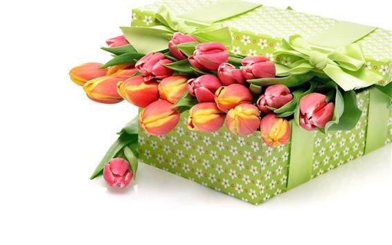 Обои Подарок, тюльпаны, коробка, белый фон