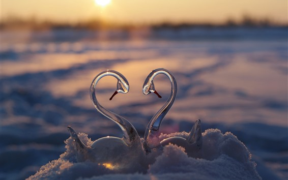 Wallpaper Glass swan toy, snow, love heart