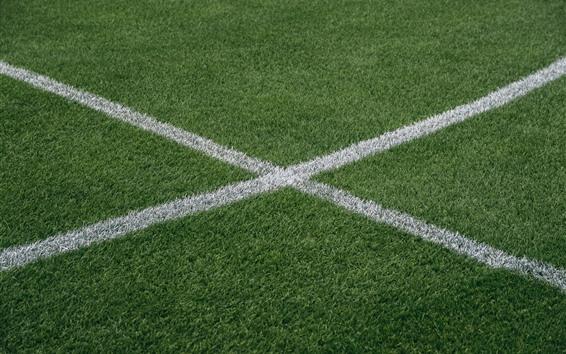 Wallpaper Grass, lawn, white lines