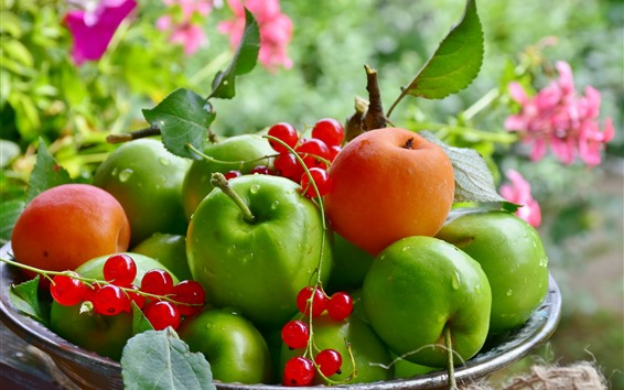Wallpaper Green apples, apricots, red currants, fruits
