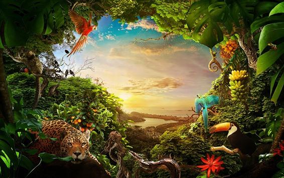 Fondos de pantalla Selva, muchos animales, plantas, ciudad, mar, sol.