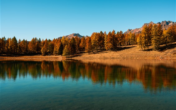 Wallpaper Lake, trees, blue sky, water reflection, autumn