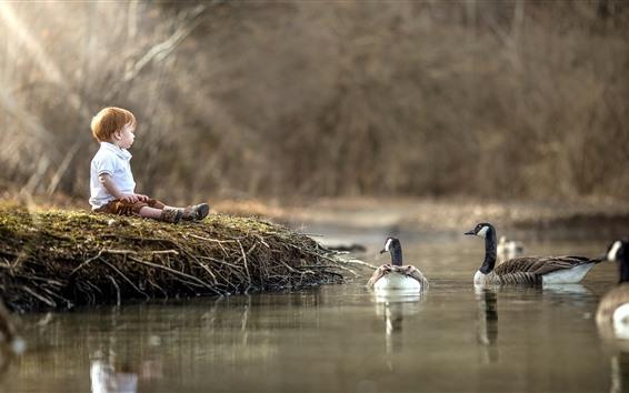 壁紙 小さな男の子とアヒル、水