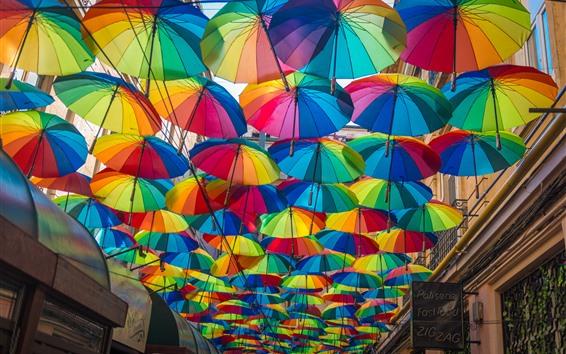 Fond d'écran Nombreux parapluies colorés, rue de la ville