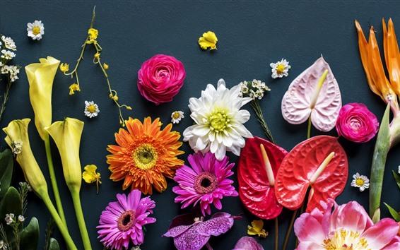 Papéis de Parede Muitos tipos de flores, fundo cinza