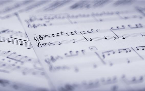 Обои Музыкальные оценки, бумага
