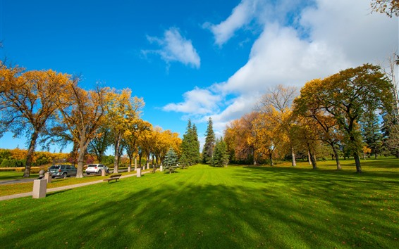 Wallpaper Park, lawn, trees, autumn, clouds, blue sky