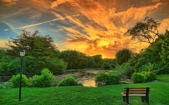 Wallpaper Park, trees, bench, lamp, clouds, pond, sunset