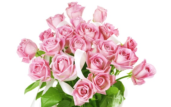 Wallpaper Pink roses, bouquet, white background
