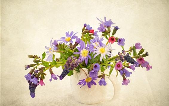 배경 화면 보라색 말미잘 꽃, 꽃병