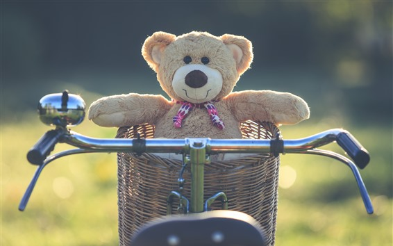 Wallpaper Teddy Bear Basket Bike 5120x2880 Uhd 5k Picture