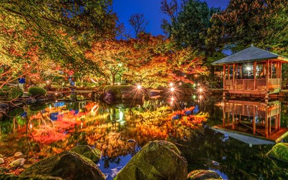 Wallpaper Tokyo, Ogikubo, Japan, night, pond, trees, lights, park