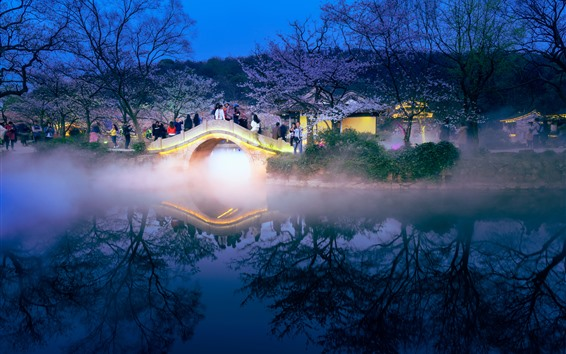 Wallpaper Travel, China, night, bridge, sakura, lake, fog