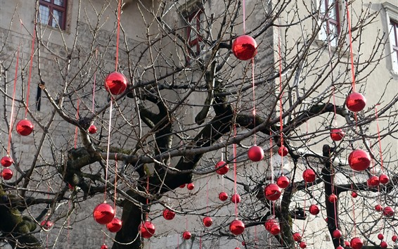 Wallpaper Tree, many red balls decoration, holiday