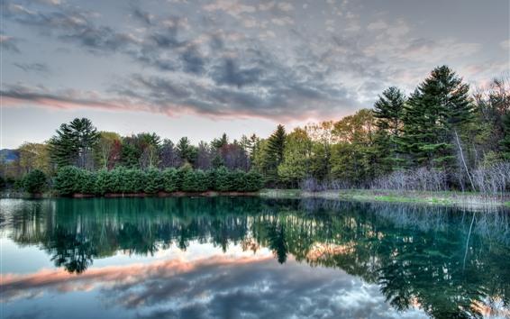 壁紙 木々、湖、水の反射、雲、朝