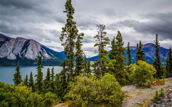 Обои Озеро Тутши, Канада, горы, озеро, деревья