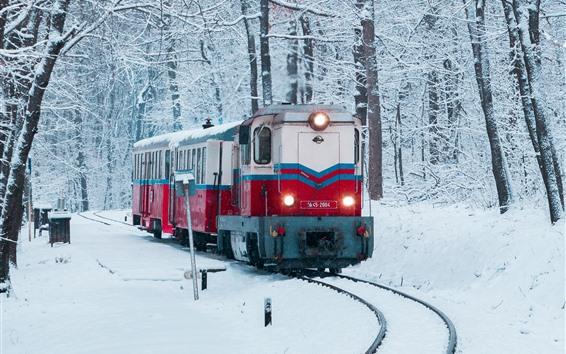 Papéis de Parede Inverno, neve, trem, ferrovia, árvores