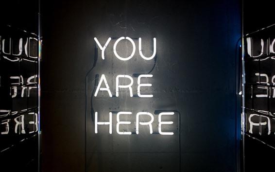 Fond d'écran Vous êtes ici, texte, néons
