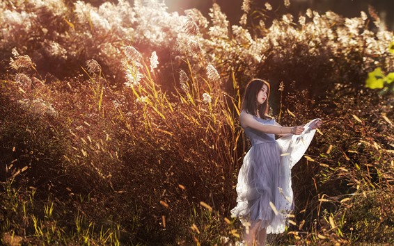 Wallpaper Asian girl, skirt, reeds, summer