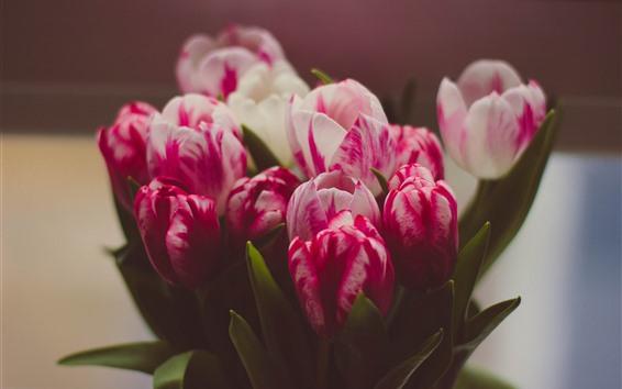 Wallpaper Bouquet, pink tulips, hazy