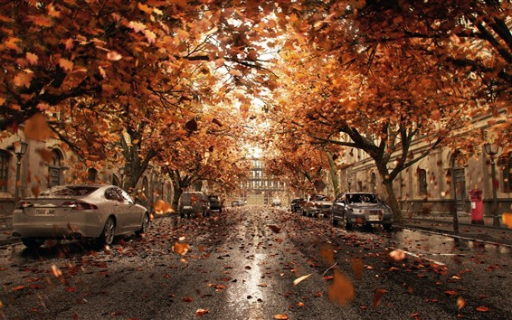 Wallpaper Cars, trees, road, city, leaves, autumn