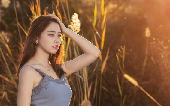 Wallpaper Chinese girl, long hair, reeds, sunshine