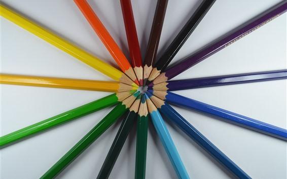 Обои Цветные карандаши круглые