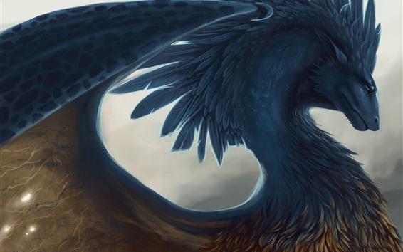 Papéis de Parede Dragão, penas, imagens de arte