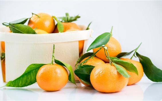 Fond d'écran Fruits, oranges fraîches, boîte