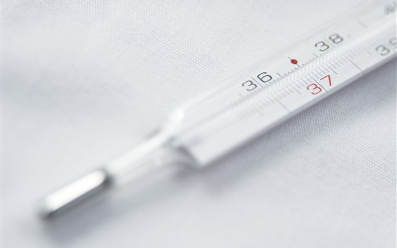 Wallpaper Glass body thermometer