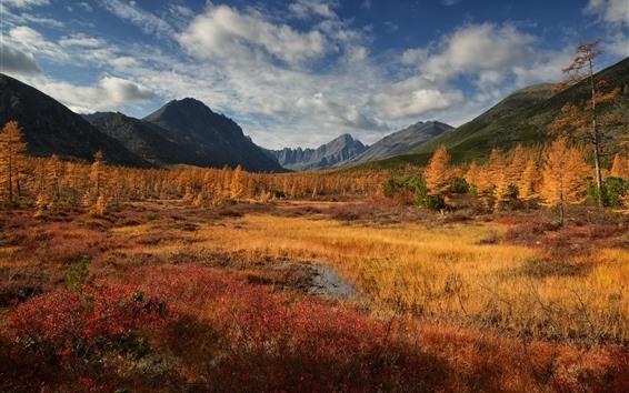 Wallpaper Golden autumn, mountains, trees, grass
