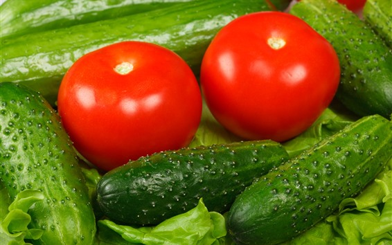 Wallpaper Green cucumbers and red tomatoes, vegetable
