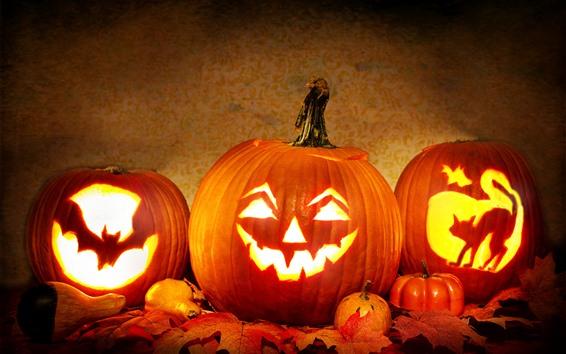 Fond d'écran Halloween, citrouille, chauve-souris, chat, lanterne