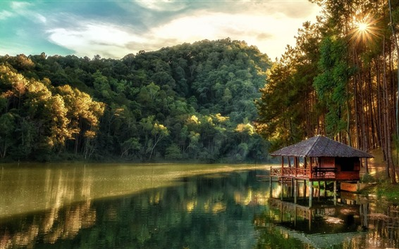 Fondos de pantalla Lago, bosque, arboles, choza, sol.