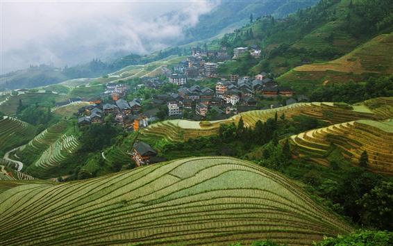 Wallpaper Longsheng Terrace, Guangxi, China, village, countryside, fog, morning