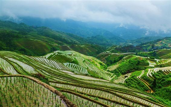 Wallpaper Longsheng terrace, rice fields, mountains, village, fog, Guangxi, China