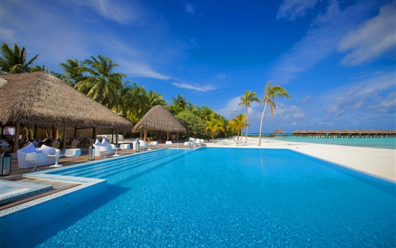 Wallpaper Maldives, swim pool, palm trees, chairs, tables