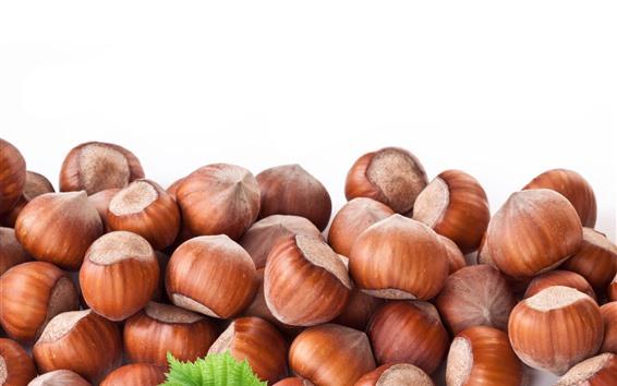 Wallpaper Nuts, chestnut, white background