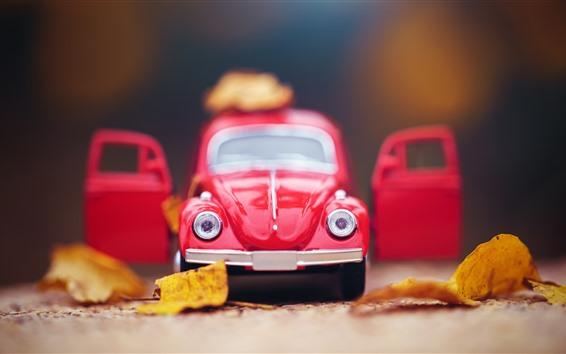 Fondos de pantalla Vista frontal del coche de juguete rojo, hojas amarillas