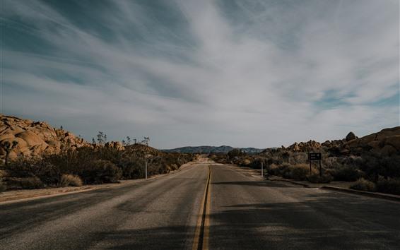Wallpaper Road, mountains, bushes