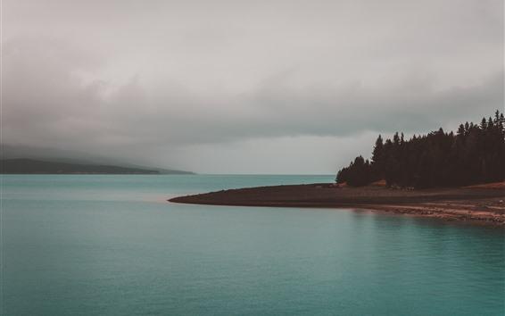 Wallpaper Sea, coast, trees, clouds, fog, morning