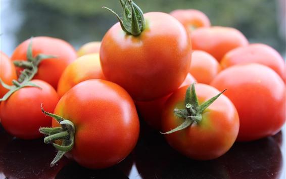 Papéis de Parede Alguns tomates, vegetais frescos