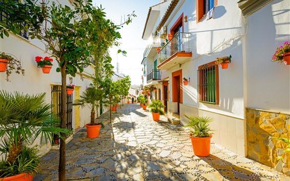 Papéis de Parede Espanha, estepona, rua, casas, árvores, sol