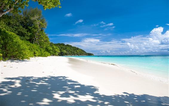 Hintergrundbilder Sommer, tropisch, Strand, Meer, Palmen, Schatten