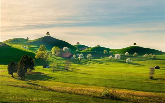 Wallpaper Switzerland beautiful nature landscape, green grass, hills, houses, trees