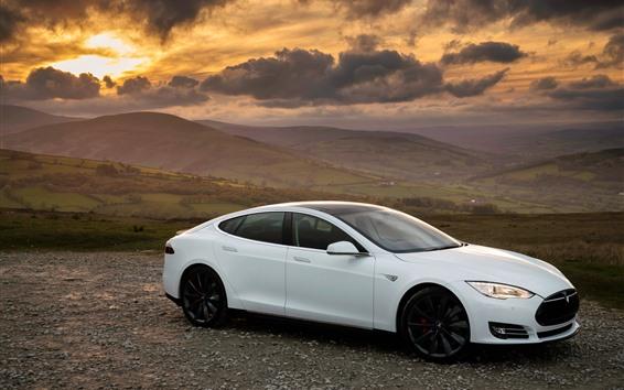 Wallpaper Tesla Model S white car side view