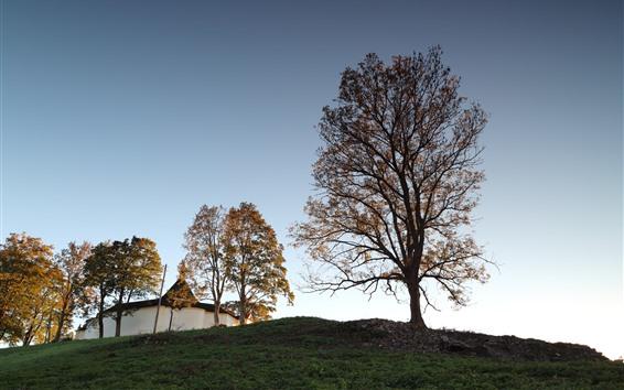 壁紙 木、空、家、チェコ