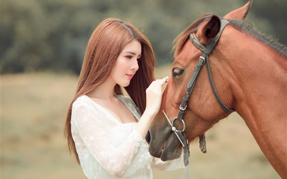 Wallpaper Asian girl and brown horse