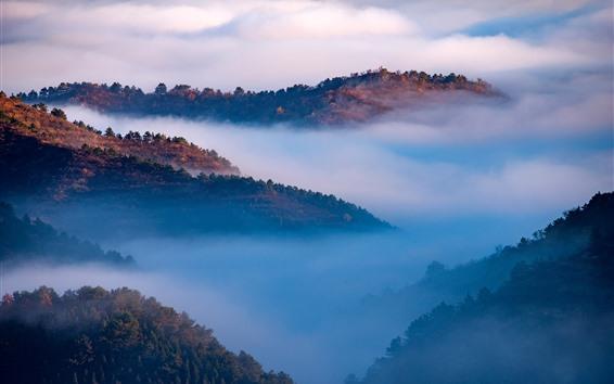 Fondos de pantalla Hermoso paisaje natural, montañas, vista superior, nubes, niebla, mañana.